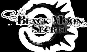 BMS Logo 02 Black 02 small